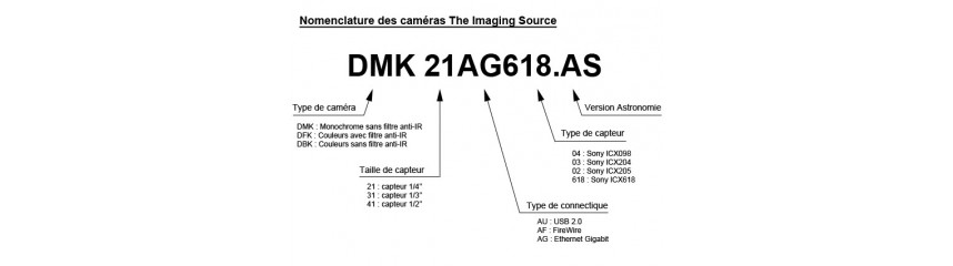 Camaras CCD Imaging Source